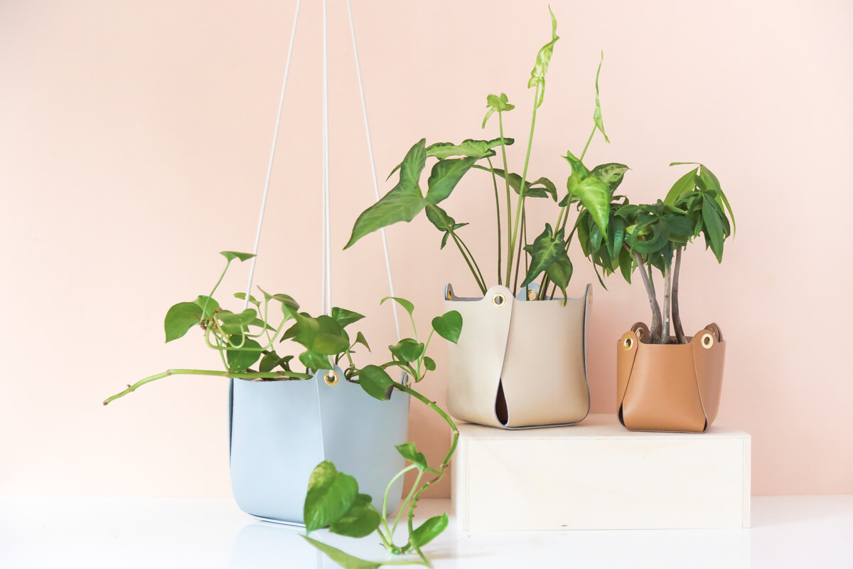 diy suspension en cuir pour plante